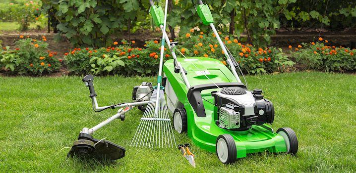 4 Brilliant Trugreen Lawn Care Tips
