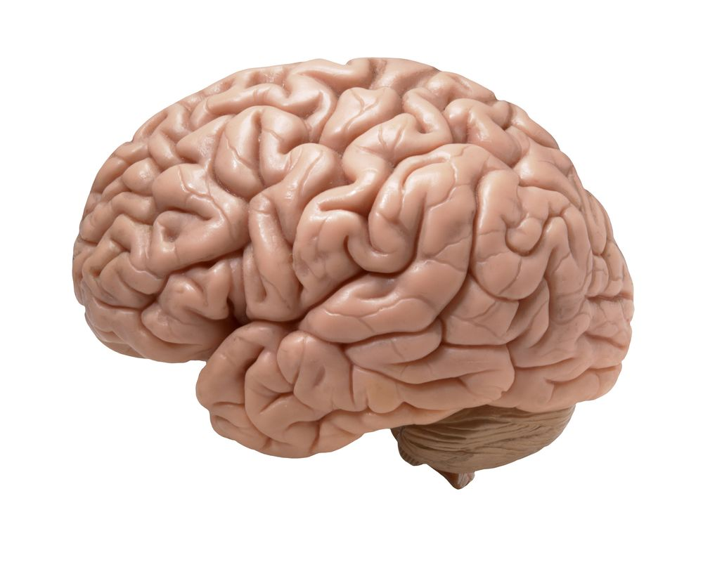 How Long Does Brain Injury Rehabilitation Take?