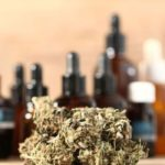 Thinking of Starting a CBD Business? Here's What You Need to Know