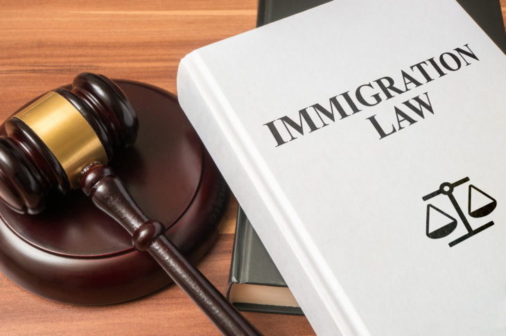 What Cases Do Immigration Attorneys Take
